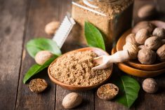 Is Overeating Nutmeg Good for the Body or Not